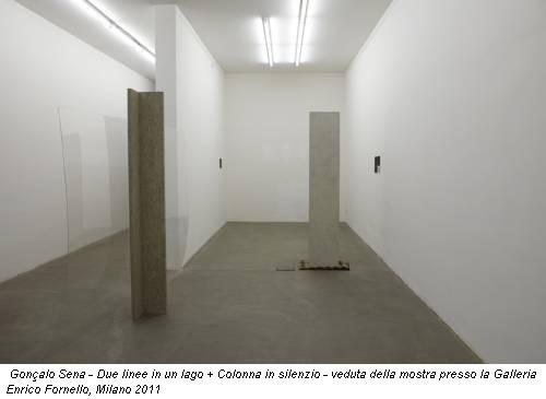 Gonçalo Sena - Due linee in un lago + Colonna in silenzio - veduta della mostra presso la Galleria Enrico Fornello, Milano 2011