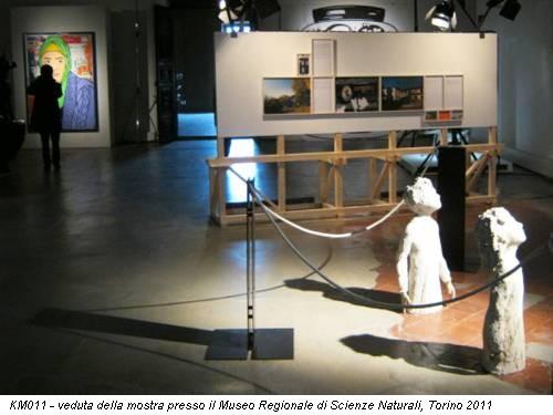 KM011 - veduta della mostra presso il Museo Regionale di Scienze Naturali, Torino 2011