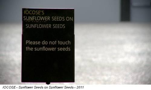 IOCOSE - Sunflower Seeds on Sunflower Seeds - 2011