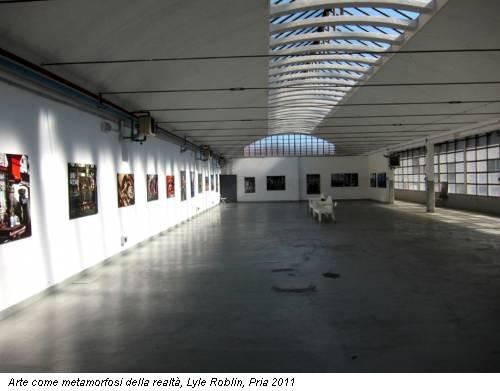 Arte come metamorfosi della realtà, Lyle Roblin, Pria 2011