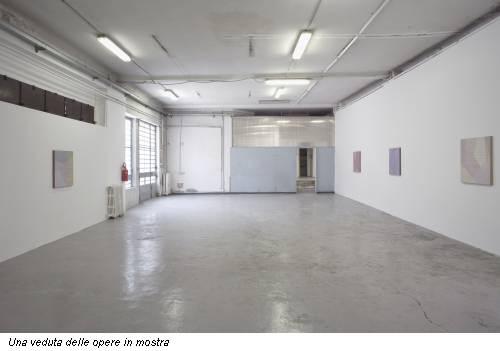 Una veduta delle opere in mostra
