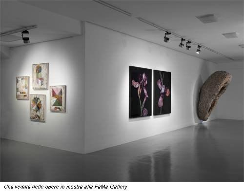 Una veduta delle opere in mostra alla FaMa Gallery