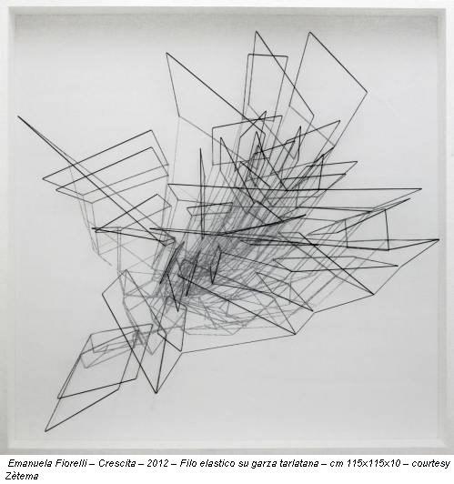Emanuela Fiorelli – Crescita – 2012 – Filo elastico su garza tarlatana – cm 115x115x10 – courtesy Zètema
