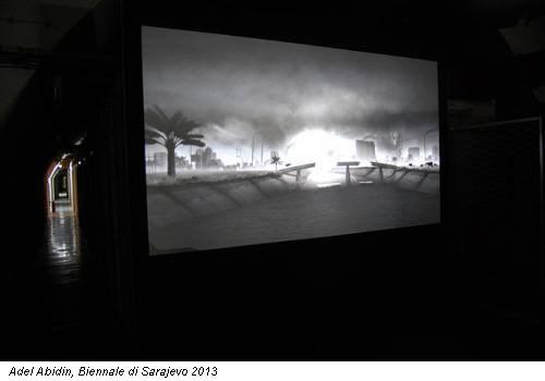 Adel Abidin, Biennale di Sarajevo 2013