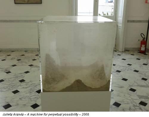 Julieta Aranda – A machine for perpetual possibility – 2008