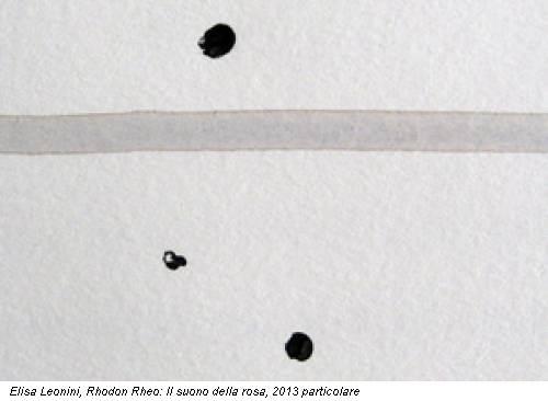 Elisa Leonini, Rhodon Rheo: Il suono della rosa, 2013 particolare
