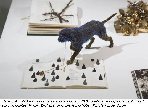 Myriam Mechita Avancer dans les vents contraires, 2013 Book with serigrahy, stainless steel and silicone. Courtesy Myriam Mechita et de la galerie Eva Hober, Paris © Thibaut Voisin