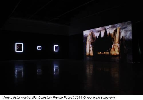 Veduta della mostra, Mat Collishaw Premio Pascali 2013, © rocco pio schiavone