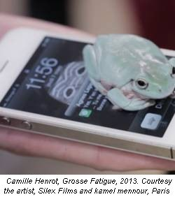 Camille Henrot, Grosse Fatigue, 2013. Courtesy the artist, Silex Films and kamel mennour, Paris
