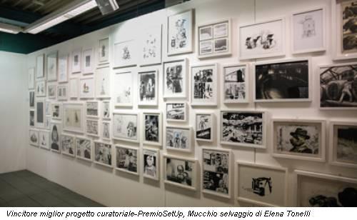 Vincitore miglior progetto curatoriale-PremioSetUp, Mucchio selvaggio di Elena Tonelli