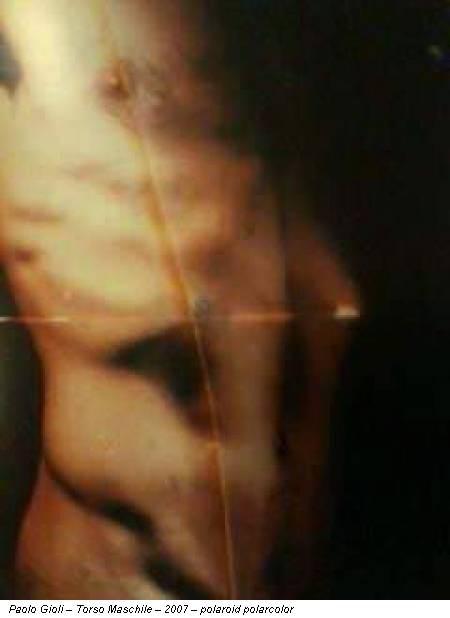 Paolo Gioli – Torso Maschile – 2007 – polaroid polarcolor