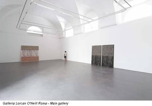 Galleria Lorcan O'Neill Roma - Main gallery