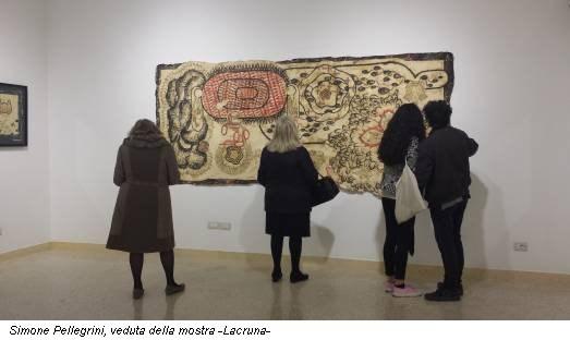 Simone Pellegrini, veduta della mostra -Lacruna-