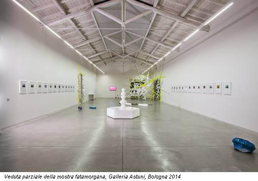 Veduta parziale della mostra fatamorgana, Galleria Astuni, Bologna 2014