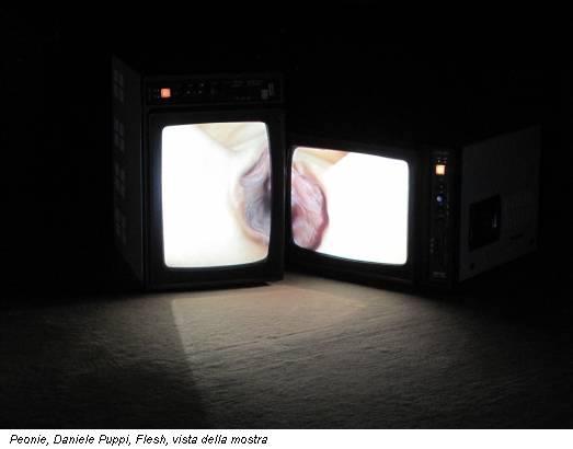 Peonie, Daniele Puppi, Flesh, vista della mostra