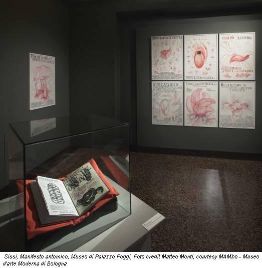 Sissi, Manifesto antomico, Museo di Palazzo Poggi, Foto credit Matteo Monti, courtesy MAMbo - Museo d'arte Moderna di Bologna