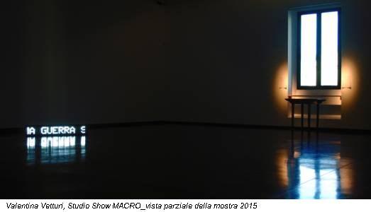 Valentina Vetturi, Studio Show MACRO_vista parziale della mostra 2015