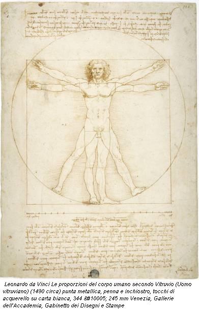 Leonardo da Vinci Le proporzioni del corpo umano secondo Vitruvio (Uomo vitruviano) (1490 circa) punta metallica, penna e inchiostro, tocchi di acquerello su carta bianca, 344 ✕ 245 mm Venezia, Gallerie dell'Accademia, Gabinetto dei Disegni e Stampe