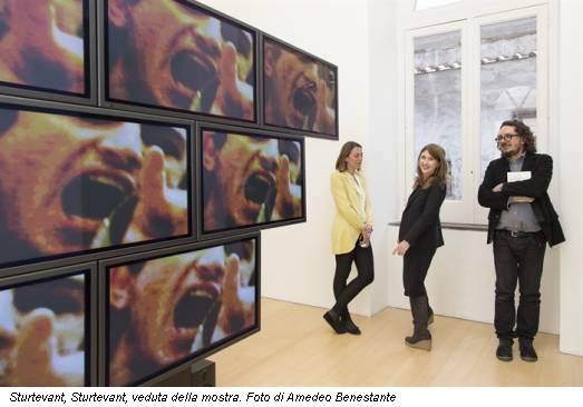 Sturtevant, Sturtevant, veduta della mostra. Foto di Amedeo Benestante