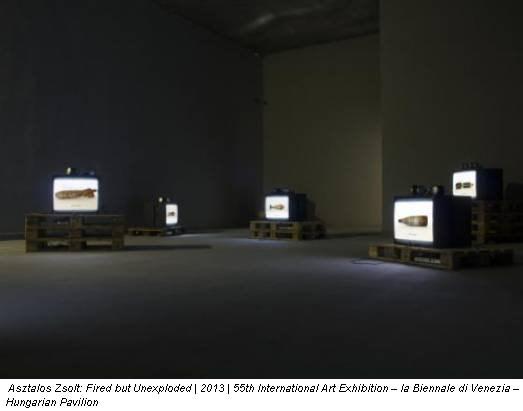 Asztalos Zsolt: Fired but Unexploded | 2013 | 55th International Art Exhibition – la Biennale di Venezia – Hungarian Pavilion