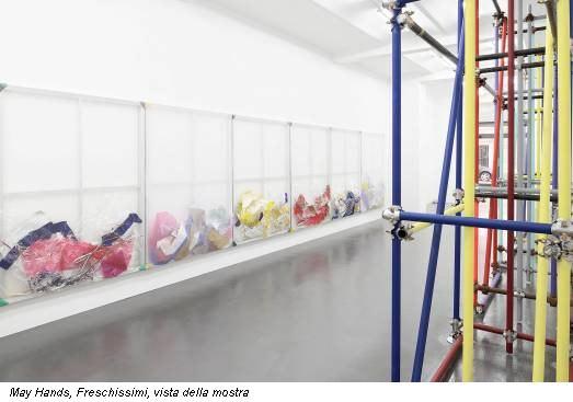 May Hands, Freschissimi, vista della mostra