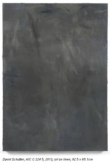 David Schutter, AIC C 224 5, 2013, oil on linen, 92.5 x 65.1cm