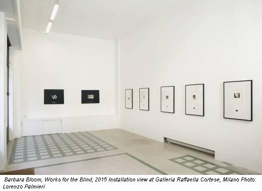 Barbara Bloom, Works for the Blind, 2015 Installation view at Galleria Raffaella Cortese, Milano Photo: Lorenzo Palmieri