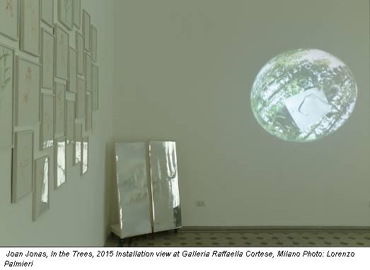 Joan Jonas, In the Trees, 2015 Installation view at Galleria Raffaella Cortese, Milano Photo: Lorenzo Palmieri