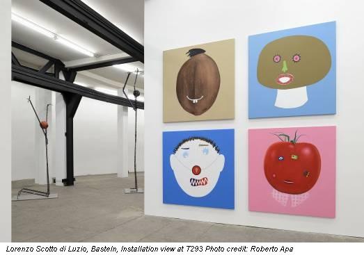 Lorenzo Scotto di Luzio, Basteln, Installation view at T293 Photo credit: Roberto Apa