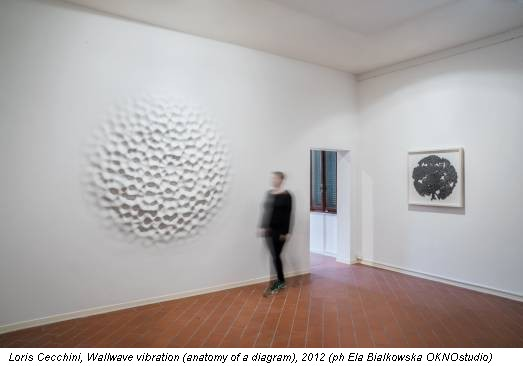 Loris Cecchini, Wallwave vibration (anatomy of a diagram), 2012 (ph Ela Bialkowska OKNOstudio)