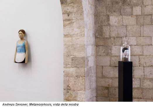 Andreas Senoner, Metamorphosis, vista della mostra
