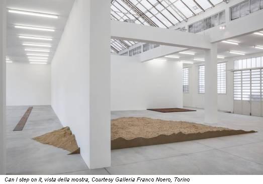 Can I step on it, vista della mostra, Courtesy Galleria Franco Noero, Torino