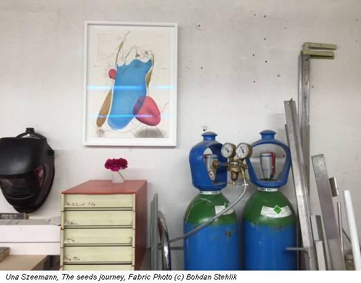 Una Szeemann, The seeds journey, Fabric Photo (c) Bohdan Stehlik