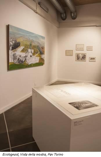 Ecologeast, Vista della mostra, Pav Torino