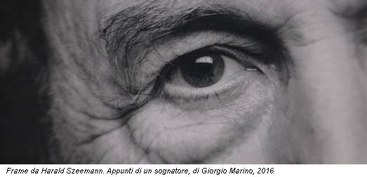 Frame da Harald Szeemann. Appunti di un sognatore, di Giorgio Marino, 2016