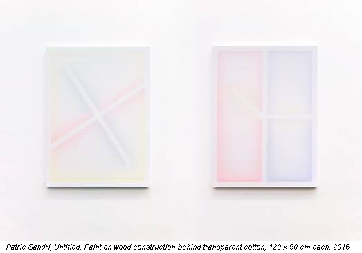 Patric Sandri, Untitled, Paint on wood construction behind transparent cotton, 120 x 90 cm each, 2016