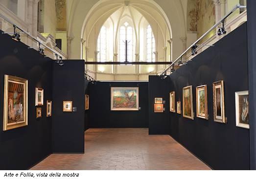 Arte e Follia, vista della mostra
