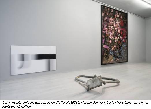 Slash, veduta della mostra con opere di Niccolò Morgan Gandolfi, Silvia Hell e Simon Laureyns, courtesy A+B gallery