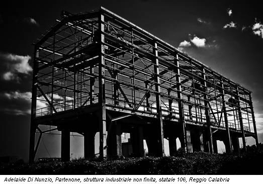 Adelaide Di Nunzio, Partenone, struttura industriale non finita, statale 106, Reggio Calabria