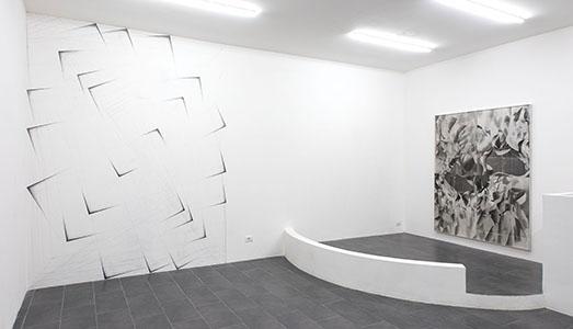 Fino al 26.I.2019 | Tillman Kaiser, Non è ancora illegale | Galerie Emanuel Layr, Roma