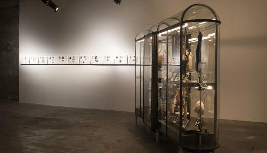 Fino al 7.II.2016   Paul Etienne Lincoln, The glover's repository   Guido Costa Project, Torino