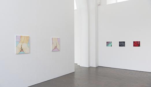 Fino al 18.V.2018 | Celia Hempton, Breach | Galleria Lorcan O'Neill, Roma