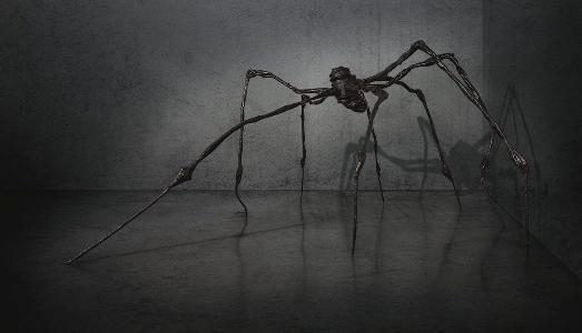 Un ragno da record