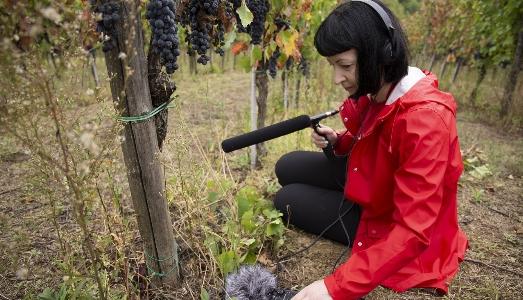 A Melbourne i paesaggi sonori delle aree rurali italiane