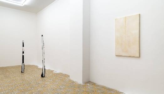 Fino al 20.III.2019 | Namsal Siedlecki Andrea Zucchini, Soma | Galleria Acappella, Napoli