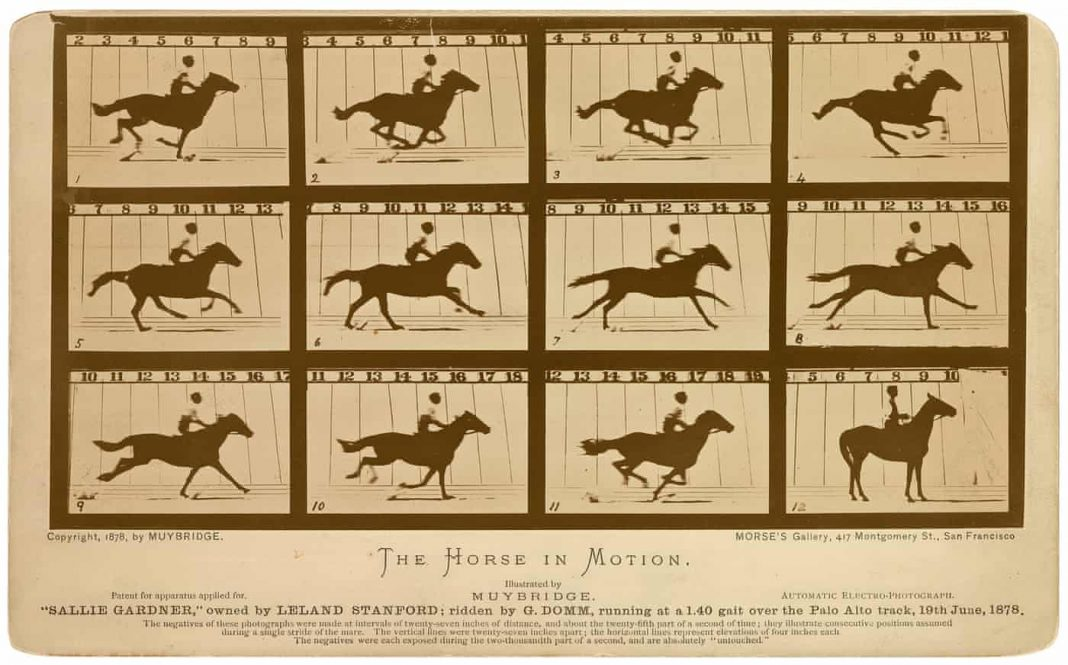 Fotografia scientifica di Eadweard Muybridge