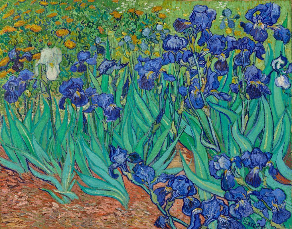 Primo posto per gli Iris di Vincent Van Gogh: è questa l'opera più scaricata dal database Getty.