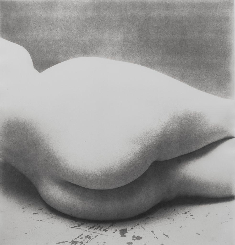 Irving Penn Nude 55, 1949-50 Stampa ai sali d'argento / Gelatin silver print 40.2 x 38.6 cm Courtesy Collezione Rolla, Svizzera