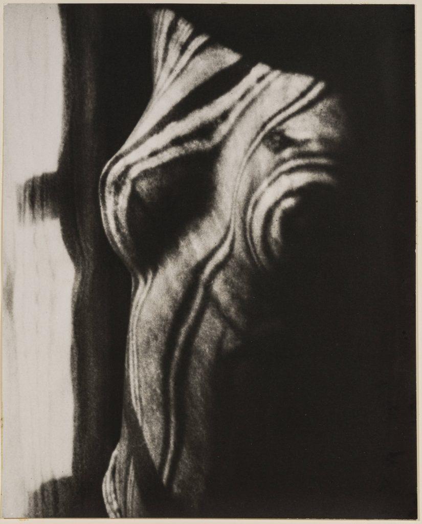 Man Ray. Retour a la raison, 1923 - 1976 Cm 23,3 x 19 Riproduzione da negativo originale, 1976 Courtesy Archivio Storico della Biennale di Venezia - ASAC, Venezia © Man Ray Trust by SIAE 2019