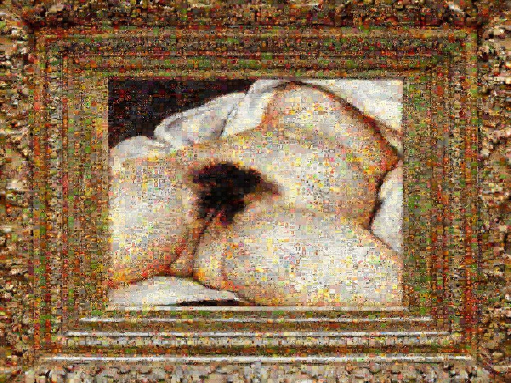 "Joan Fontcuberta, ""Googlegrama: The Origin of the World"", 2007"